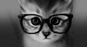 Chat-à-lunettes